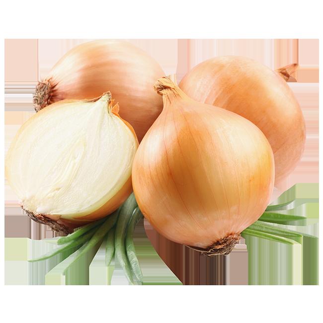 cebollas-onion
