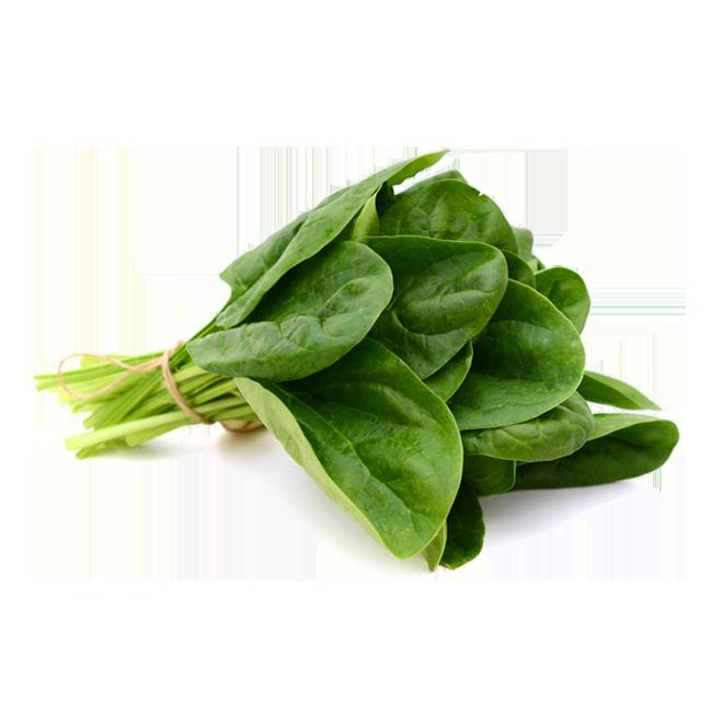 espinaca-spinach